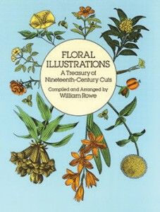 Bok Floral Illustrations